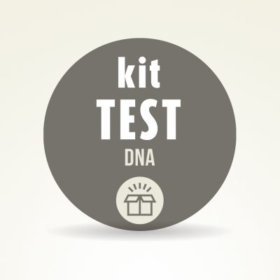 Kit test dna