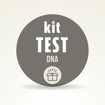 Kit test dna